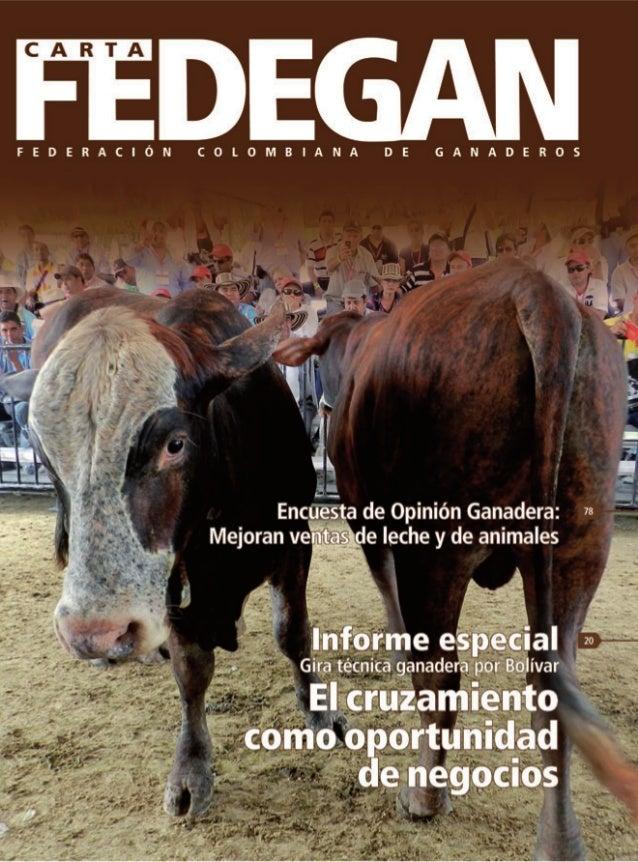 CONTENIDO Junta Directiva de la Federación Colombiana de Ganaderos - Fedegán Presidente: Roberto Valenzuela Reyes Vicepres...