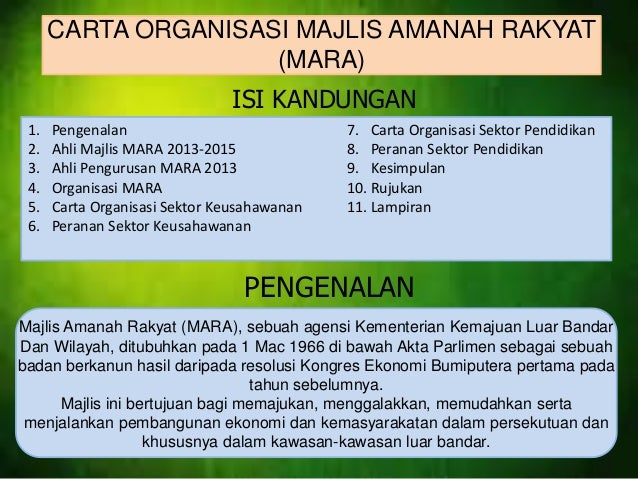 Carta organisasi mara