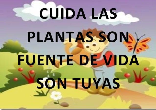 Cartel de las plantas for Como cuidar las plantas