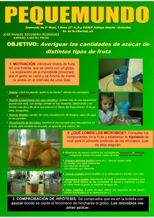Carteles experiencias2013