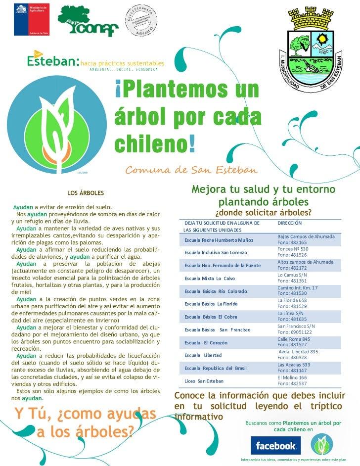 Afiche un arbol por cada chileno