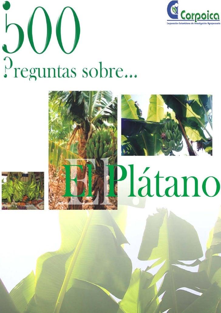 TABLA DE CONTENIDOCultivo del Plátano   1. Lugar de Origen de las Musáceas y Distribución.   2. Genética y Fitomejoramient...