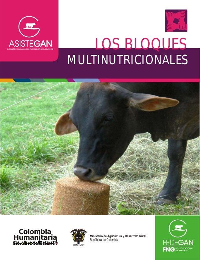 Cartilla modulo alimentacion_bloques_nutricionales