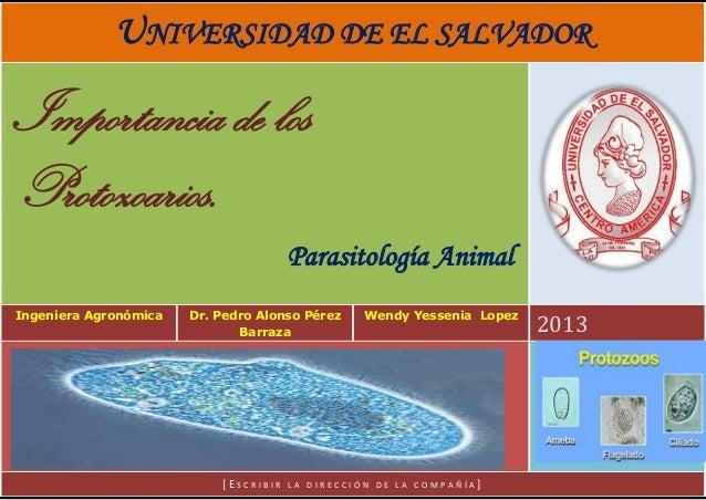 UNIVERSIDAD DE EL SALVADOR  Importancia de los Protozoarios. Parasitología Animal Ingeniera Agronómica  Dr. Pedro Alonso P...