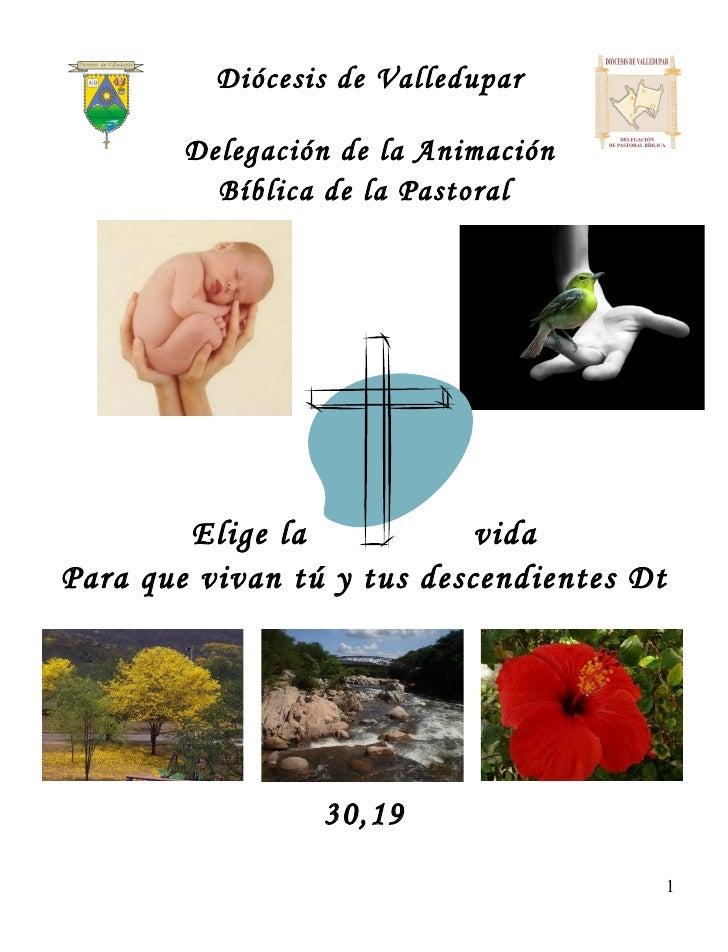 Diócesis de Valledupar        Delegación de la Animación          Bíblica de la Pastoral        Elige la            vidaPa...