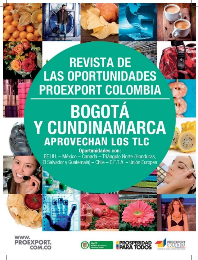 REVISTA DE LAS OPORTUNIDADES2 www.proexport.com.co De acuerdo con el escalafón de competitividad de la Comisión Económica ...