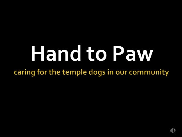 Hand to Paw Temple Dog Outreach - 2013