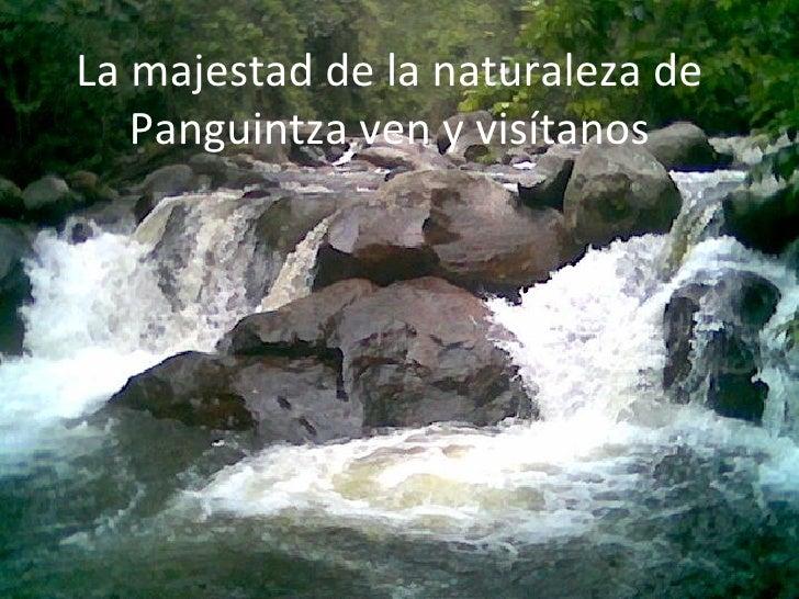 La majestad de la naturaleza de Panguintza ven y visítanos