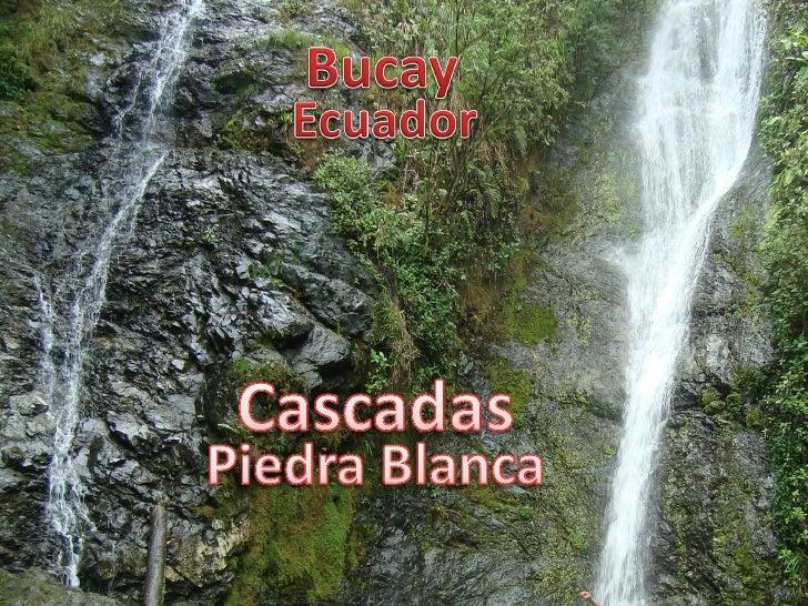 Carretera de la provincia del Guayas