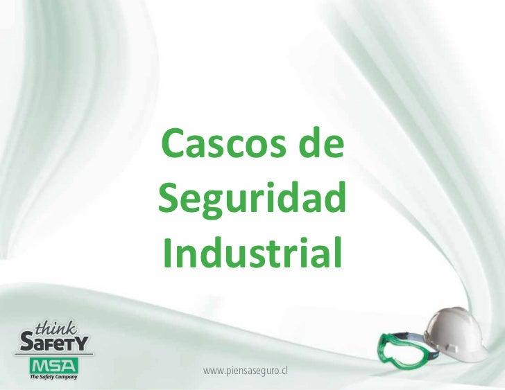 Cascos de seguridad industrial2 - Cascos de seguridad ...