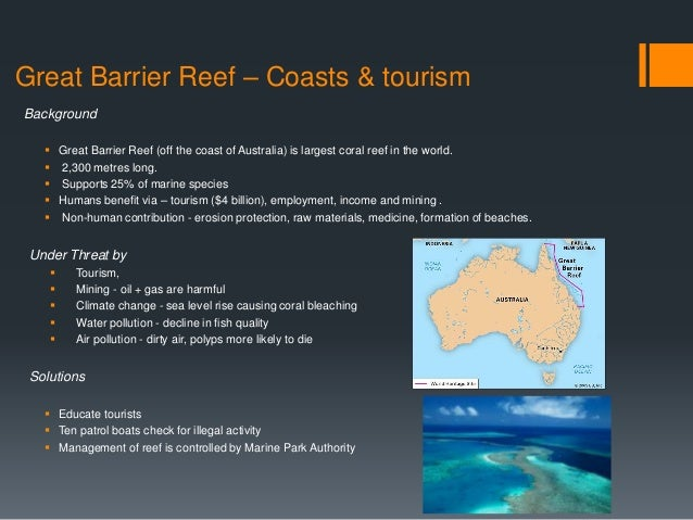 the great barrier reef and the environment and social impacts of tourism essay The warm waters of the great barrier reef hold an abundance of food and are the perfect feeding grounds for marine mammals including large numbers of dolphins and whales looking both for sheltered waters place to feed and care for their young.
