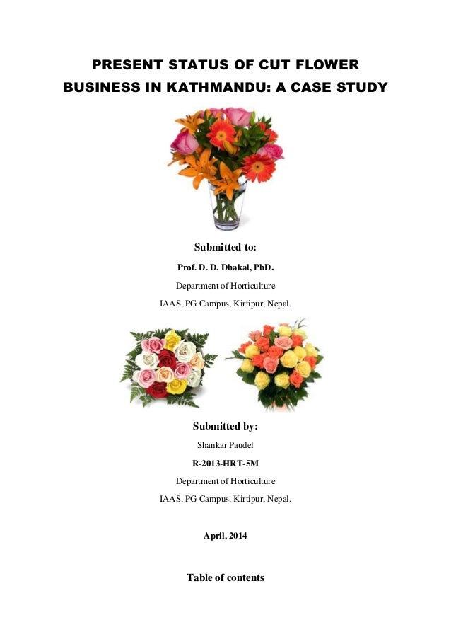 current status of cut flower business in kathmandu