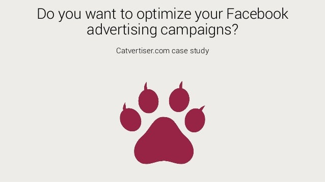 Do you want to optimize your Facebook advertising campaigns? Catvertiser.com case study