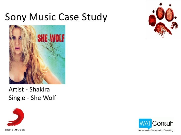 Social Media Case Study consulting  monitoring  managing  ORM  marketing   PR  products  audit Artist - Shakira Album Sing...