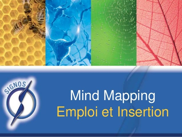 Mind Mapping Emploi et Insertion