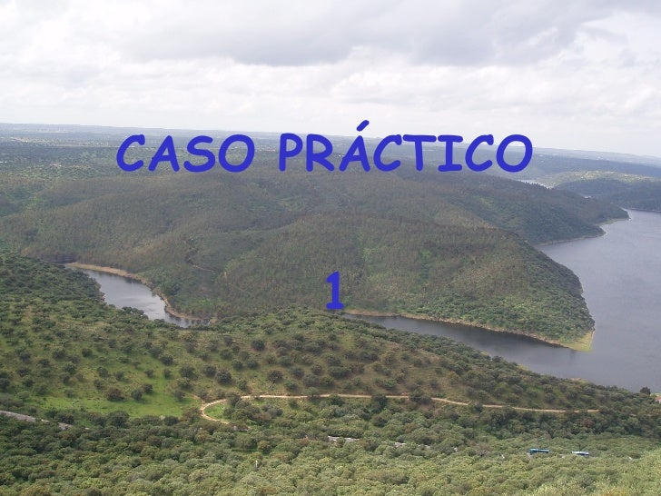 CASO PRÁCTICO  1