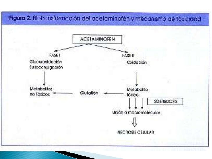Toxicología: intoxicación con paracetamol