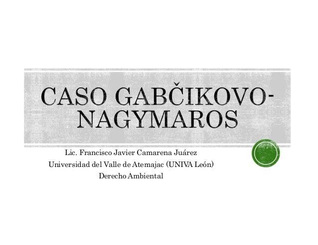 Lic. Francisco Javier Camarena JuárezUniversidad del Valle de Atemajac (UNIVA León)Derecho Ambiental