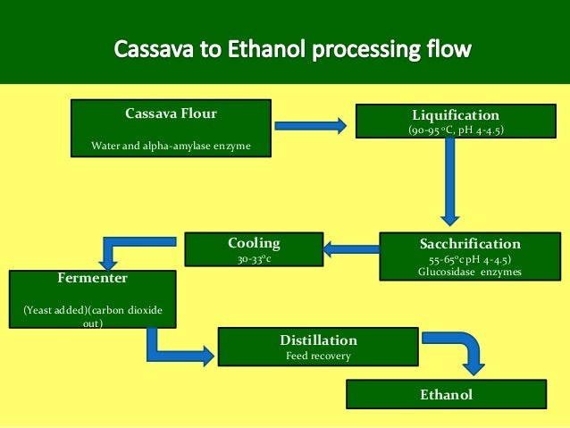 cassava starch as a major component Variations in the amylopectin components can result in failures by the wet milling processor to meet cassava starch products the other major argument regards raw materials whereas, us and eu corn, potato and low valued by-products of cassava starch manufacturing: cassava.