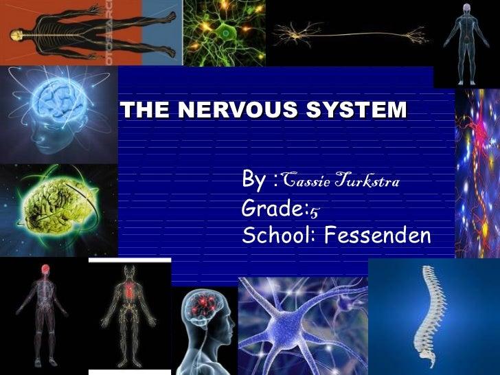 THE NERVOUS SYSTEM By  : Cassie Turkstra Grade: 5 School: Fessenden