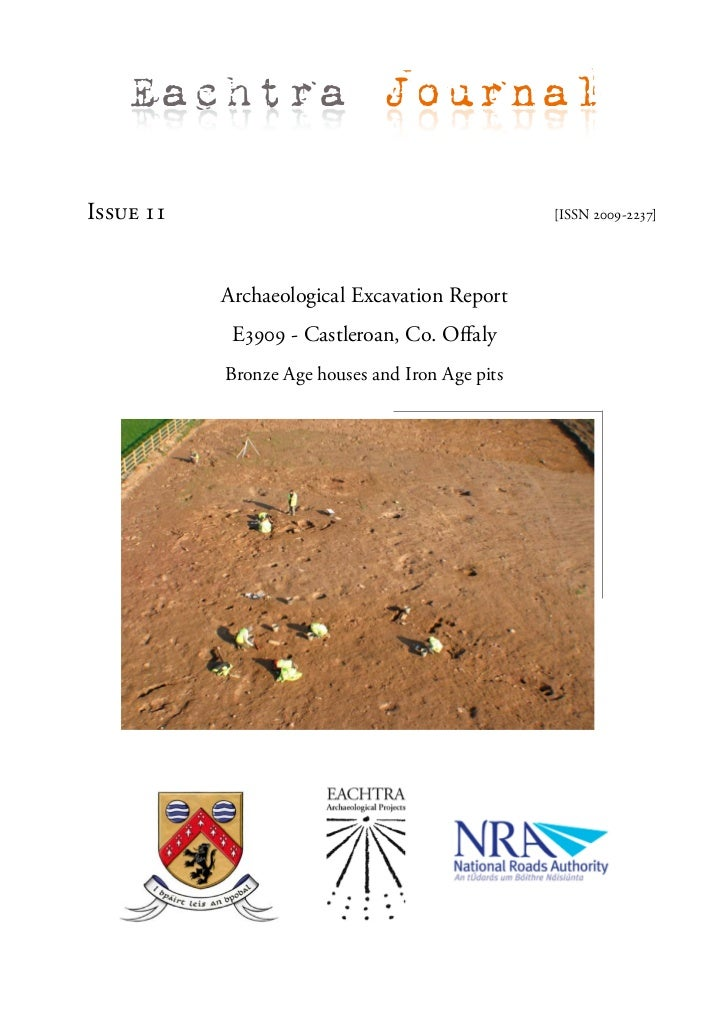 Archaeological Report - Castleroan, Co. Offaly (Ireland)