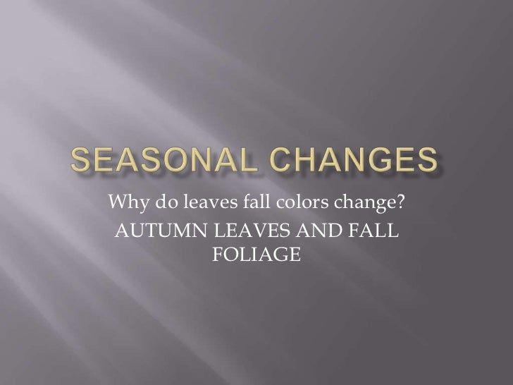 Why do leaves fall colors change?AUTUMN LEAVES AND FALL          FOLIAGE