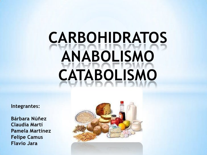 Catabolismo anabolismo