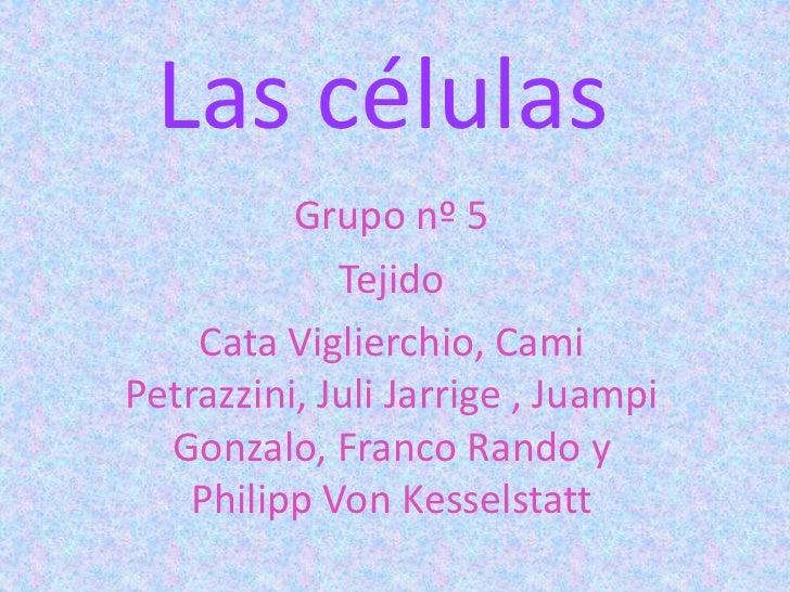 Las células          Grupo nº 5             Tejido    Cata Viglierchio, CamiPetrazzini, Juli Jarrige , Juampi  Gonzalo, Fr...