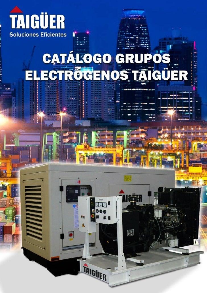 Catalogo grupos electr genos taig er - Grupos electrogenos precios ...