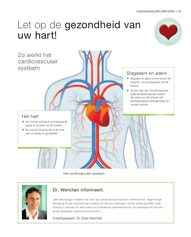 cardiovasculair systeem