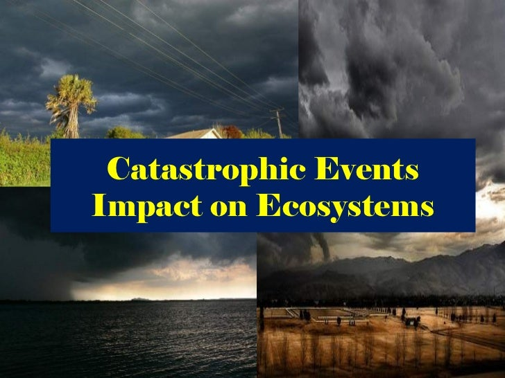 Catastrophic events impact on the ecosystem (nx power lite)