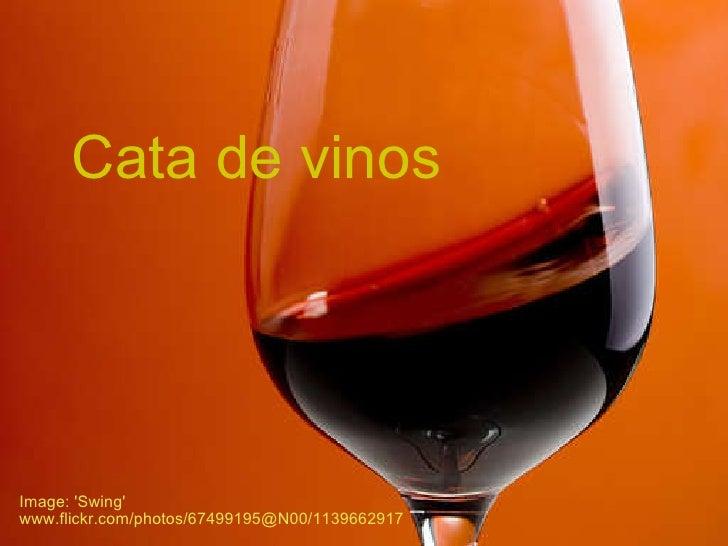 """Fotos del curso """"Cata de Vinos"""""""