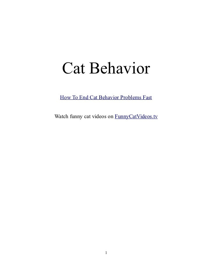 Cat Behavior  How To End Cat Behavior Problems FastWatch funny cat videos on FunnyCatVideos.tv                     1