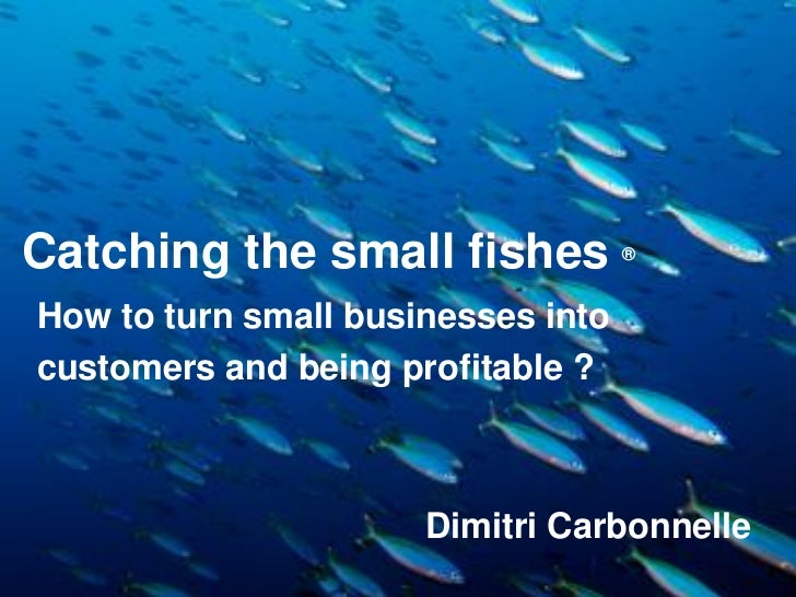 Be profitable with Small Medium businesses - SME - Catching the small fishes - Livosphere