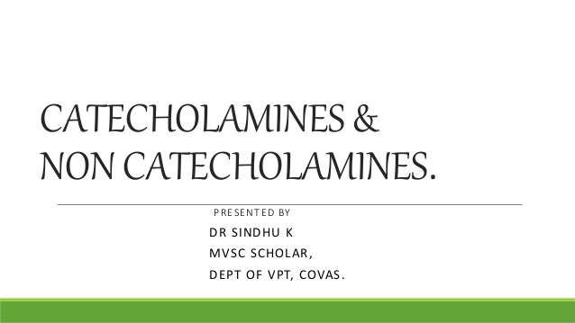 CATECHOLAMINES & NON CATECHOLAMINES. .PRESENTED BY DR SINDHU K MVSC SCHOLAR, DEPT OF VPT, COVAS.