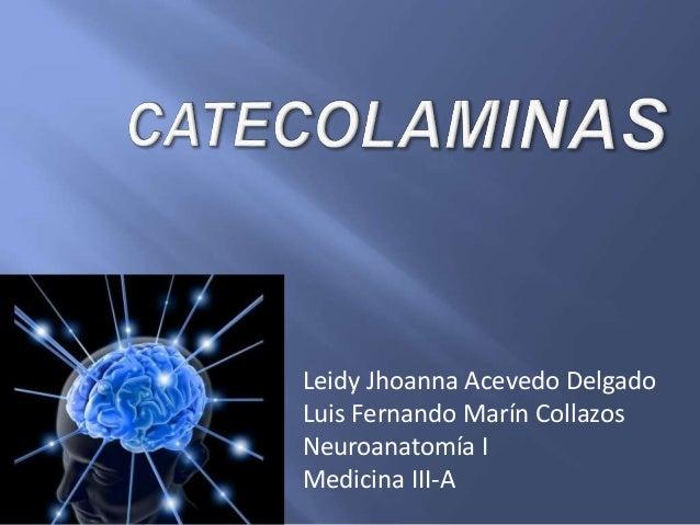 Leidy Jhoanna Acevedo Delgado Luis Fernando Marín Collazos Neuroanatomía I Medicina III-A