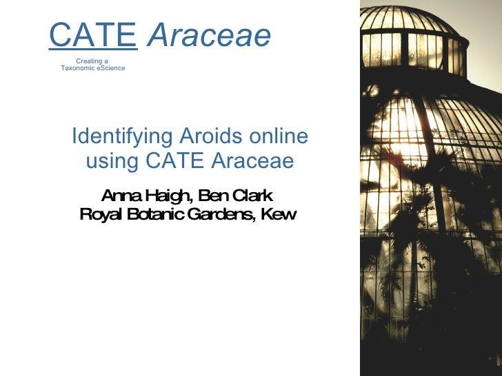 Identifying Aroids online using CATE Araceae <ul><li>Anna Haigh, Ben Clark </li></ul><ul><li>Royal Botanic Gardens, Kew </...