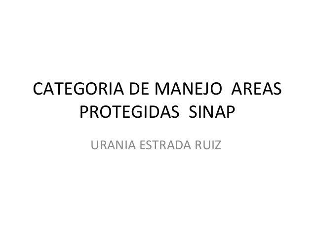 CATEGORIA DE MANEJO AREAS     PROTEGIDAS SINAP     URANIA ESTRADA RUIZ
