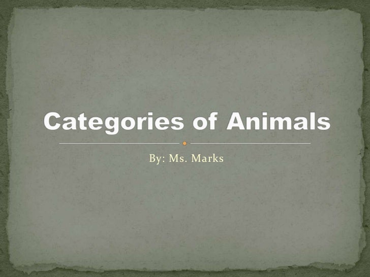 By: Ms. Marks<br />Categories of Animals<br />