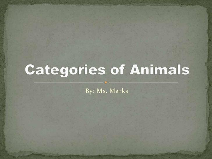 Categories Of Animals