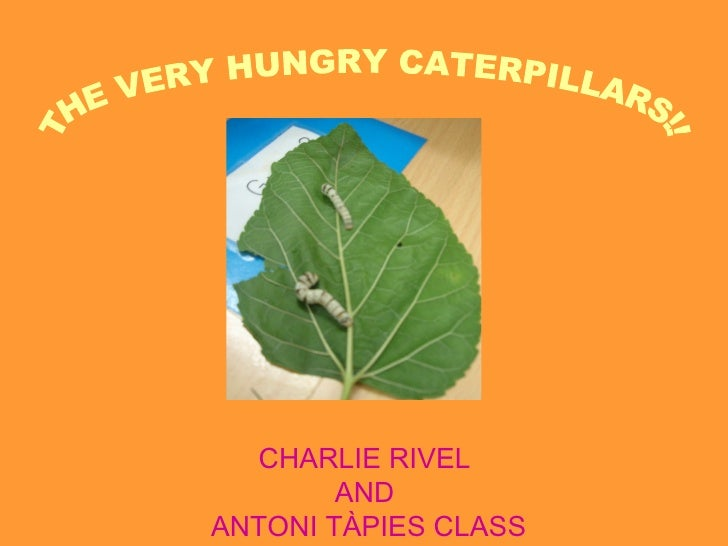 CHARLIE RIVEL        ANDANTONI TÀPIES CLASS