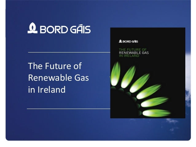 1 The Future of Renewable Gas in Ireland