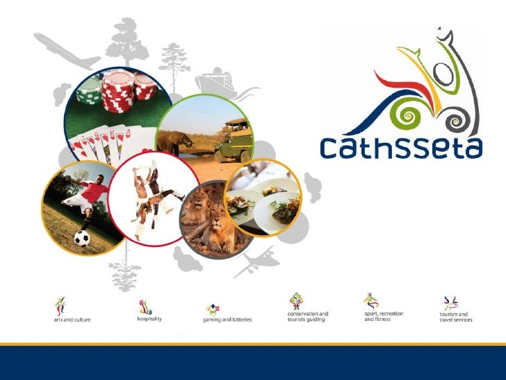 CATHSSETA presentation to WCHI HR Forum Skills Committee - June 2012