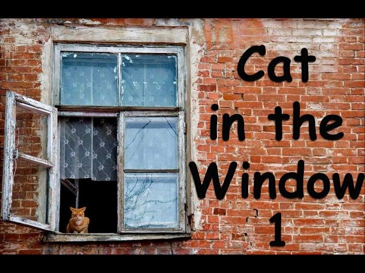 CAT IN THE WINDOW 1