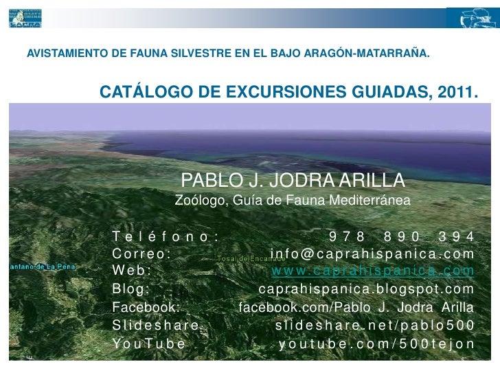 AVISTAMIENTO DE FAUNA SILVESTRE EN EL BAJO ARAGÓN-MATARRAÑA.<br />CATÁLOGO DE EXCURSIONES GUIADAS, 2011.<br />PABLO J. JOD...