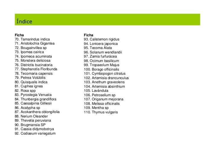 Cat logo de plantas de jard n 1 - Plantas de jardin nombres ...