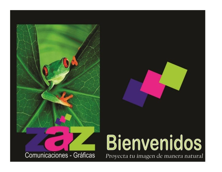 PORTAFOLIO ZAZ COMUNICACIONES - GRÁFICAS