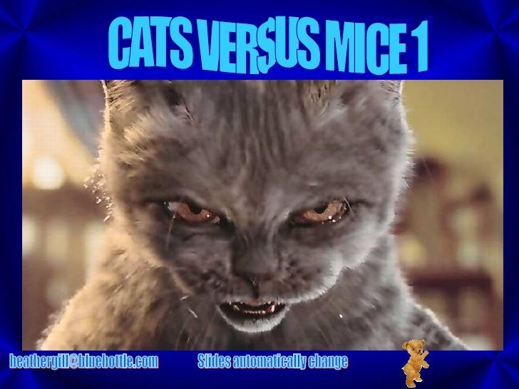 CATS VERSUS MICE 1 [email_address] Slides automatically change