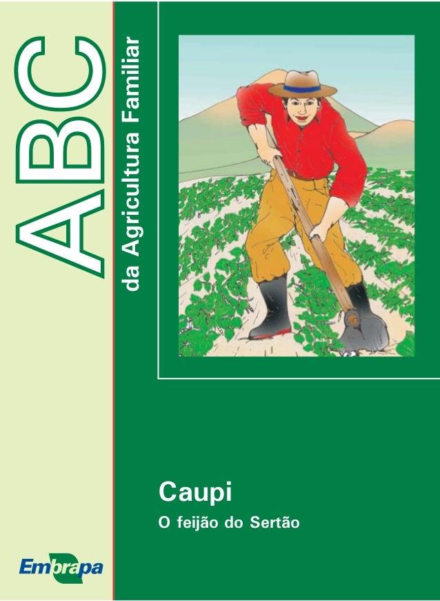 ABC  da Agricultura Familiar  Caupi  O feijão do Sertão