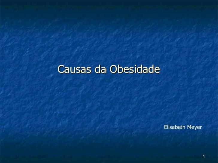 Causas da Obesidade Elisabeth Meyer